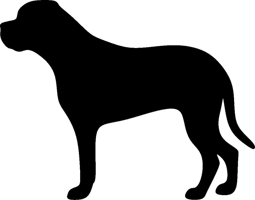 Bullmastiffi