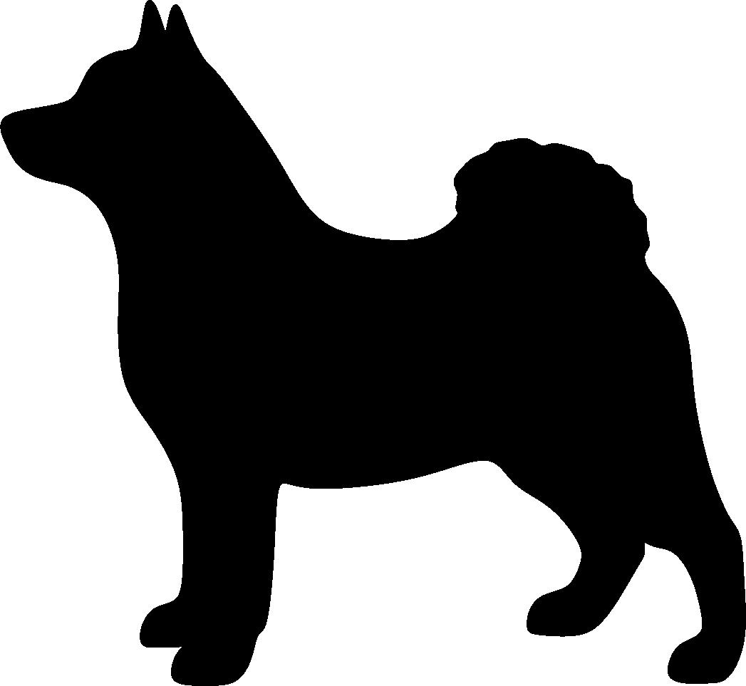 Harmaa norjanhirvikoira