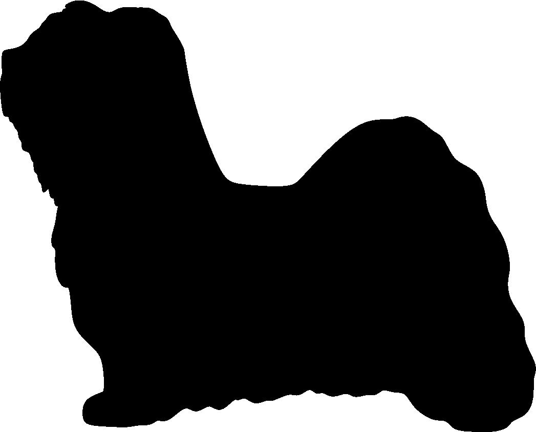 Havannankoira