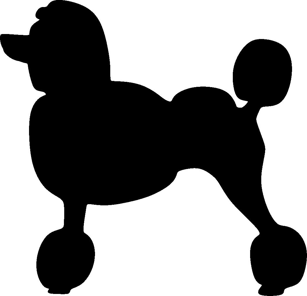 Isovillakoira