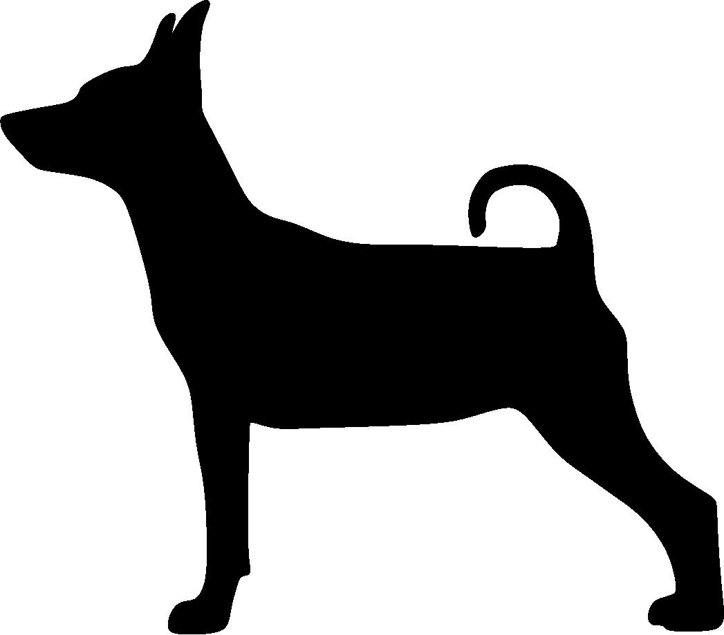 Kääpiöpinseri