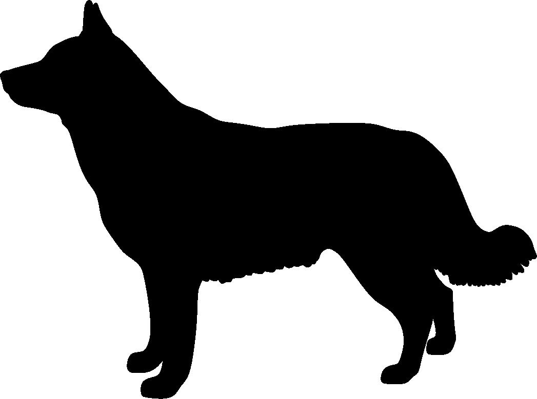 Lapinporokoira