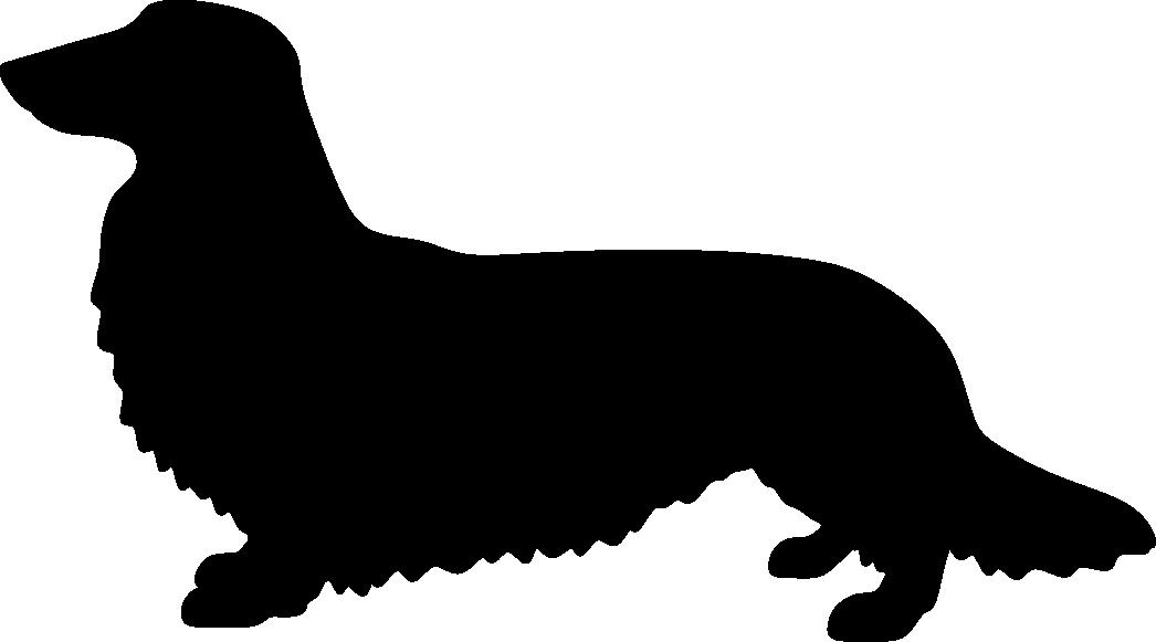 Mäyräkoira, PK