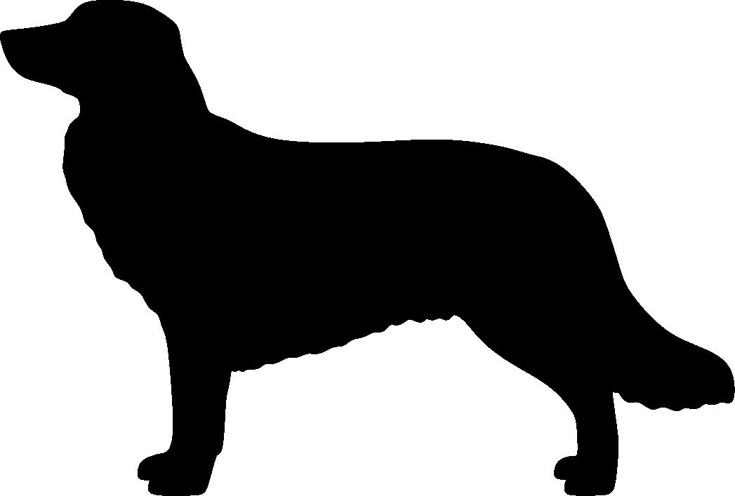 Novascotiannoutaja