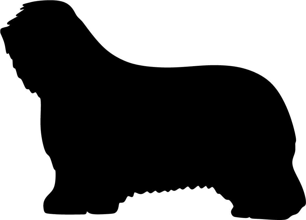 Partacollie