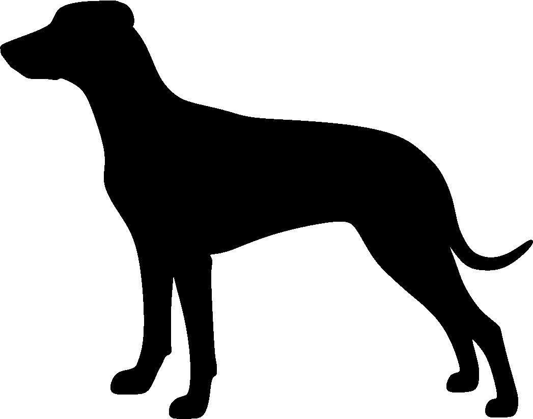 Pinseri