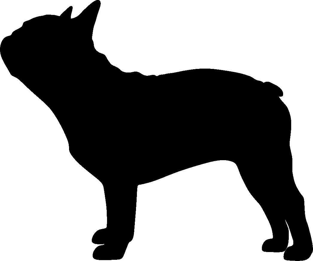 Ranskanbulldoggi