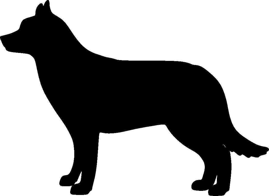 Siperianhusky