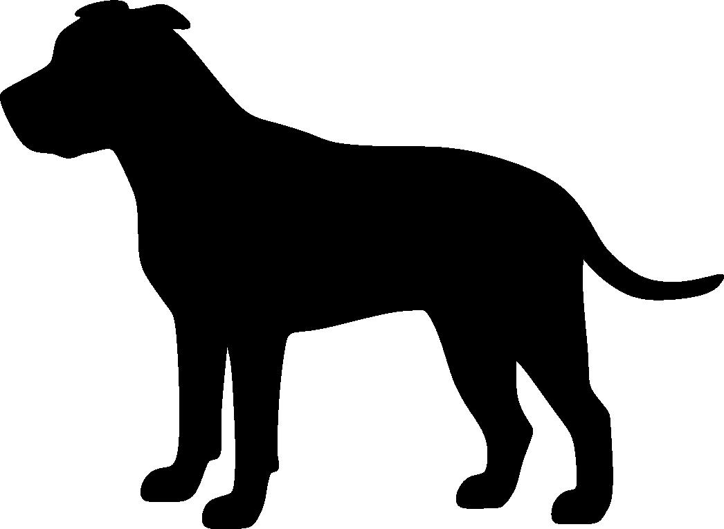 Staffordshirenbullterrieri