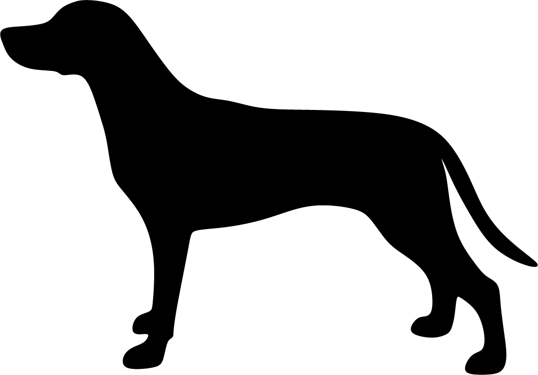 Suomenajokoira