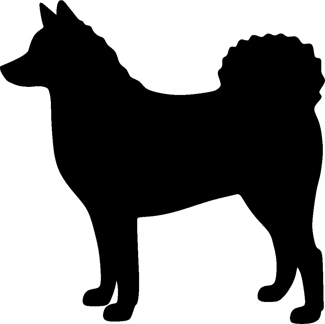 Suomenpystykorva