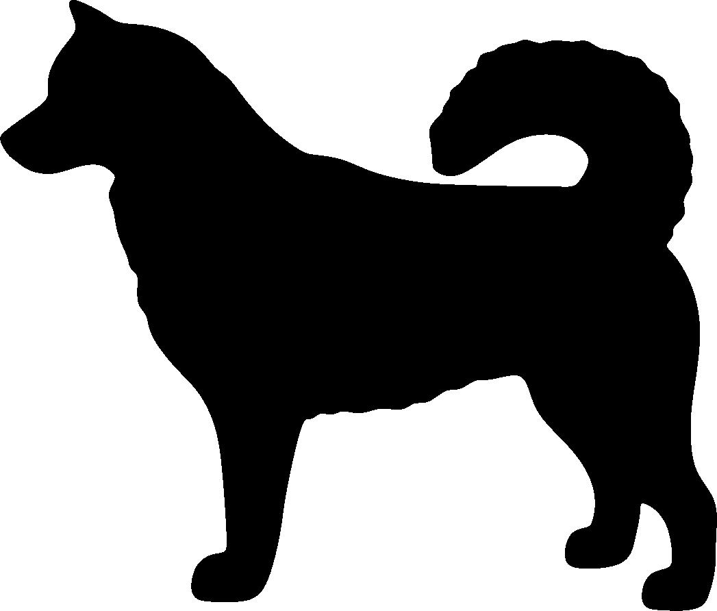 Alaskanmalamuutti