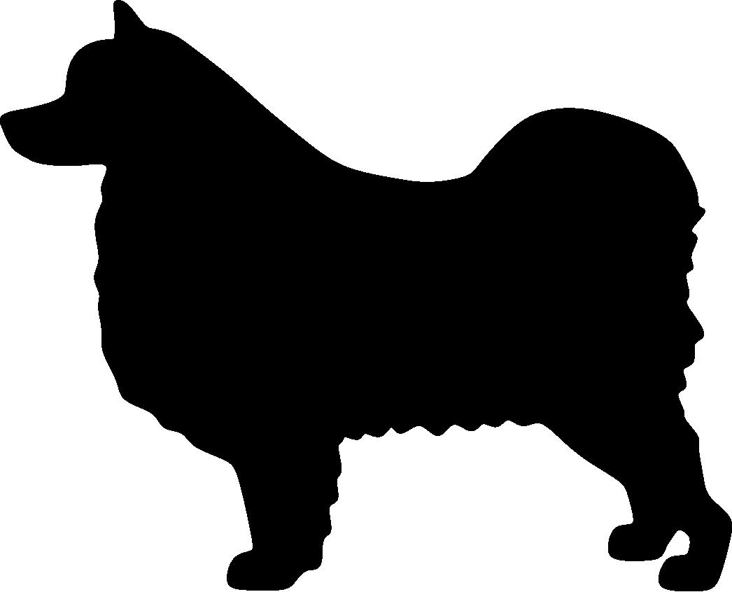 Ruotsinlapinkoira