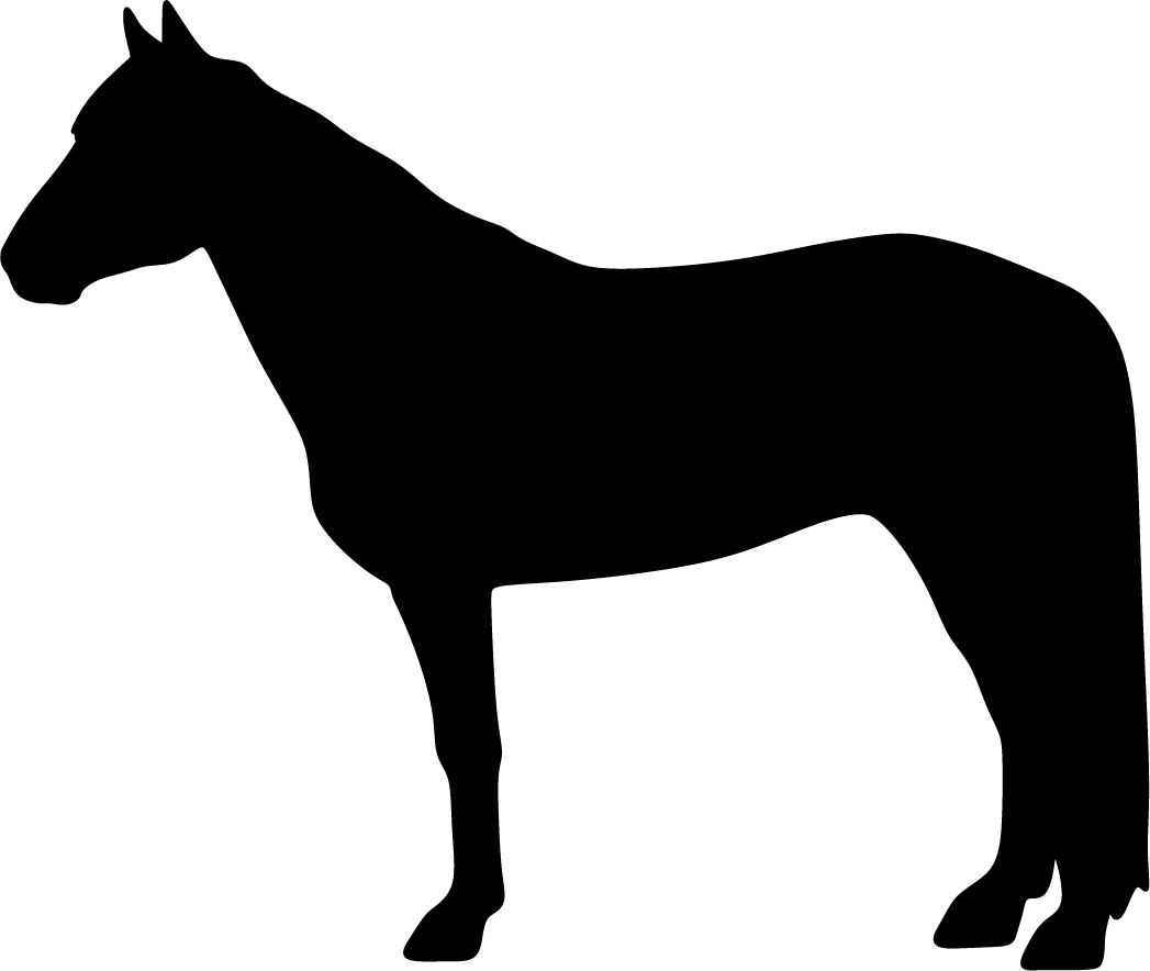 Suomenhevonen