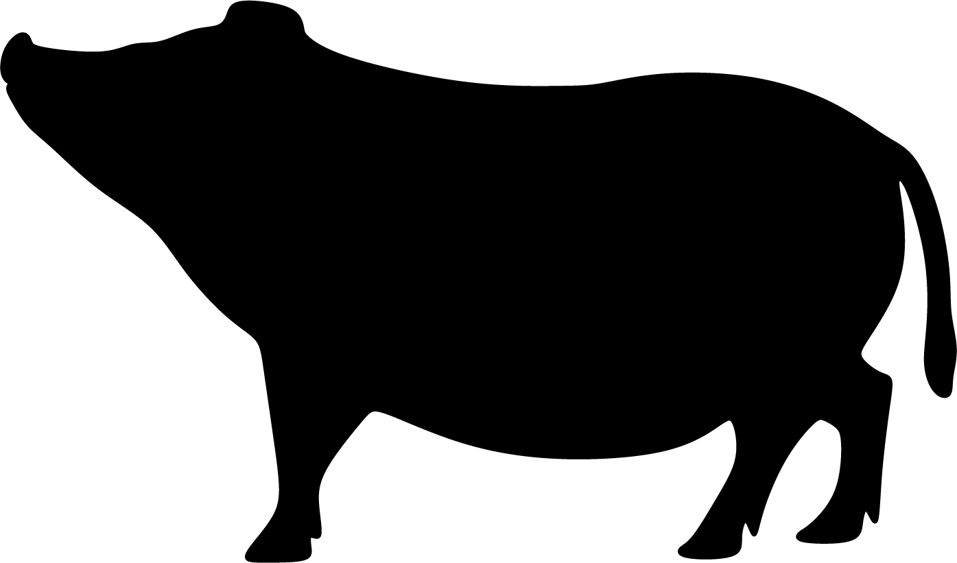Possu