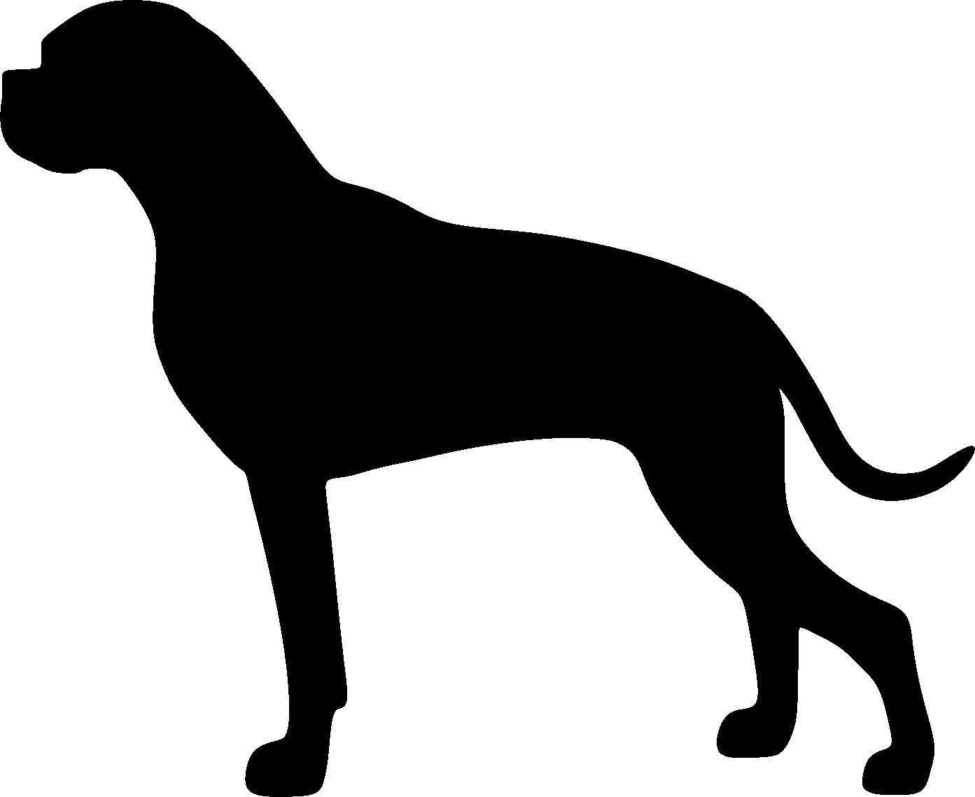 Bokseri