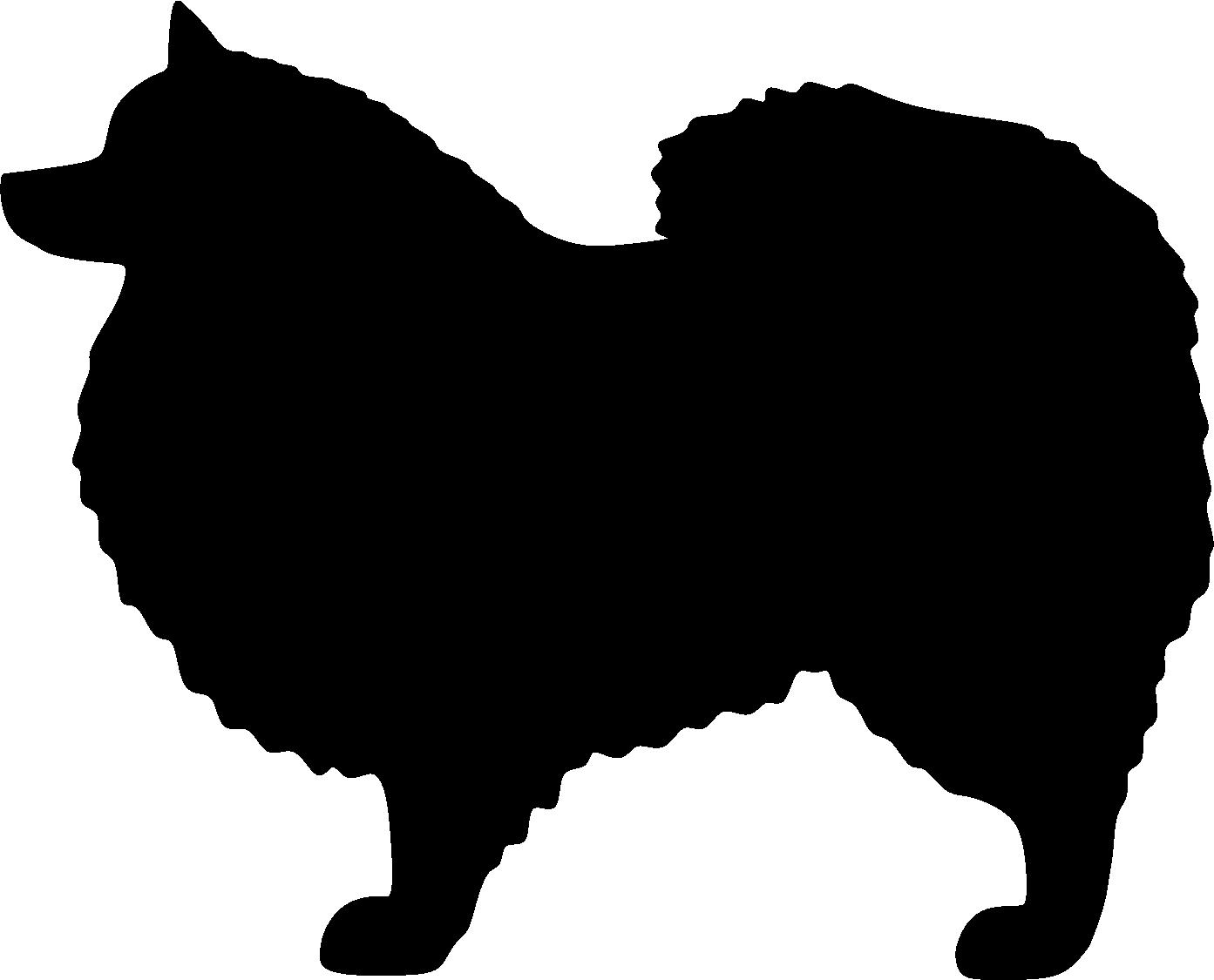 Japaninpystykorva